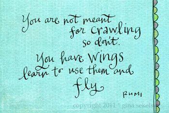 Rumi blog size